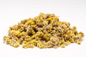Бессмертник песчаный – лекарственные свойства и способы применения