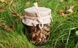 Как быстро и вкусно замариновать лесные опята