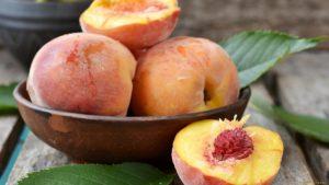 Абрикосы, персики и сливы