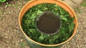 Жидкий компост (общий рецепт)
