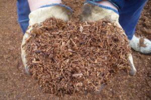 Защитите почву слоем мульчи