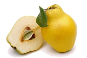 Традиционные плодовые деревья