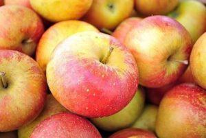 Хрустящие яблоки на зуб просятся