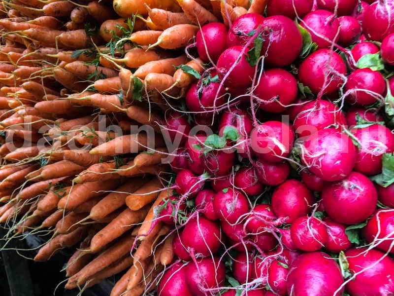Как вырастить свеклу и морковь сахарными
