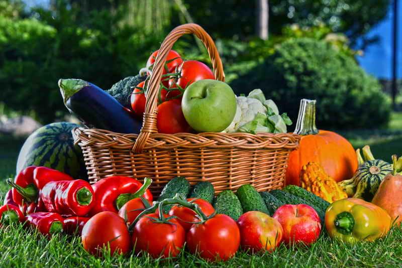 Август — разгар овощной поры