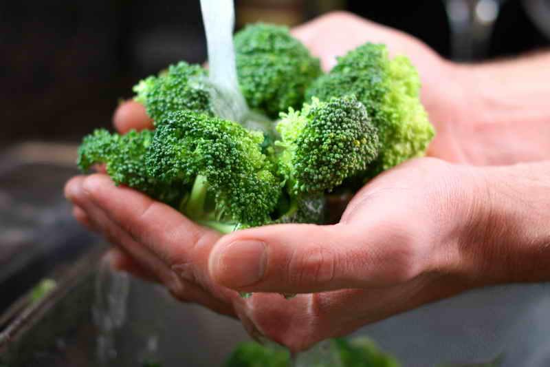 Несколько советов по выращиванию брокколи