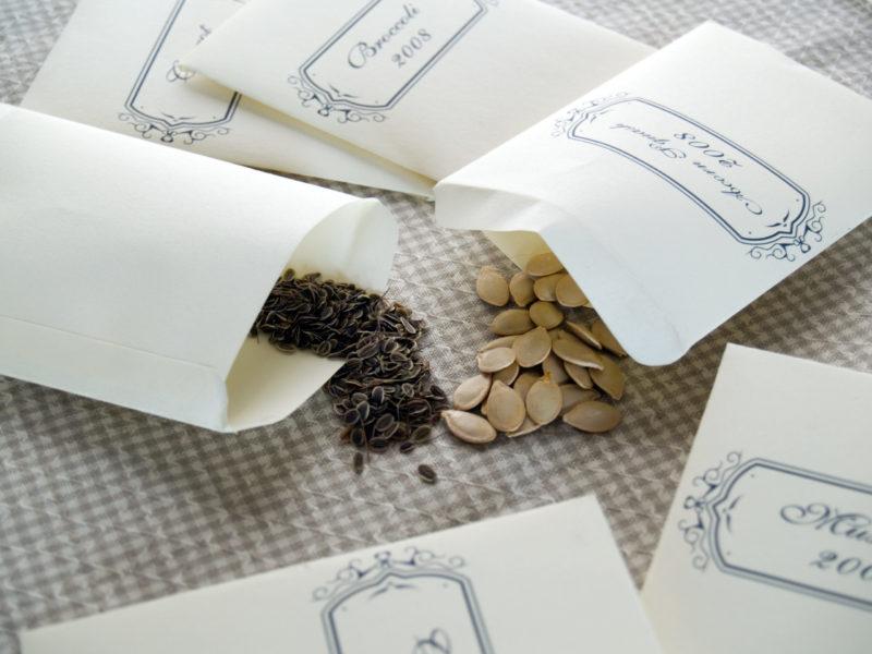 пакетики для семян своими руками фото охотятся хорьков