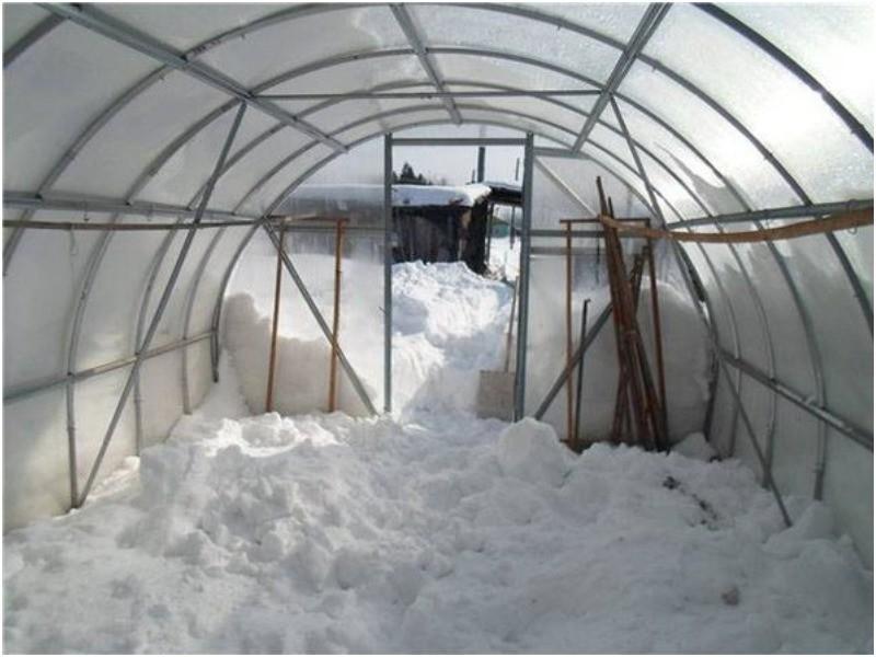 зачем накидывать снег в теплицу зимой
