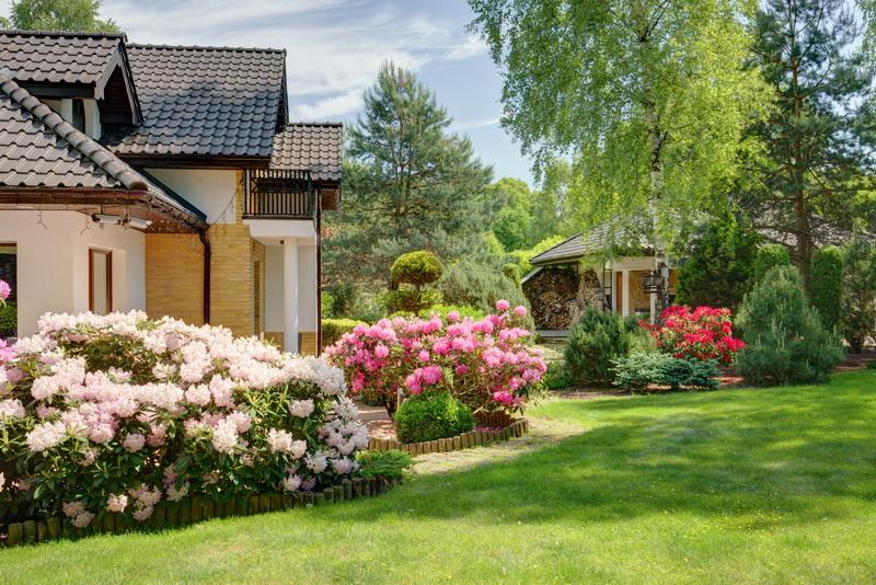 Садовые цветущие кустарники