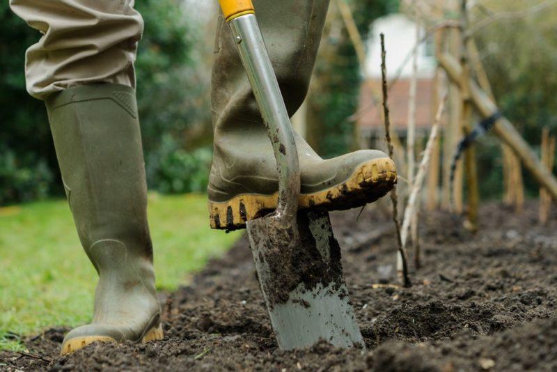 Осенняя перекопка огорода — залог богатого урожая
