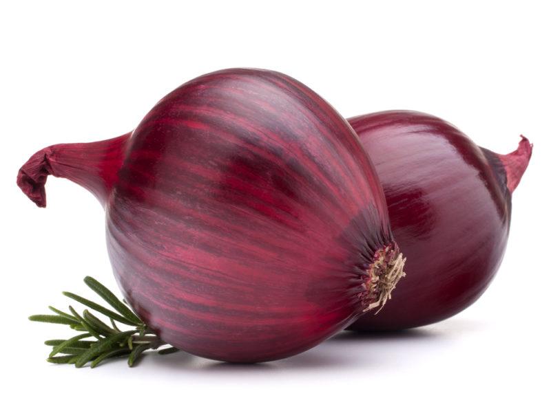 11 лучших сортов лука для подзимней высадки в грунт
