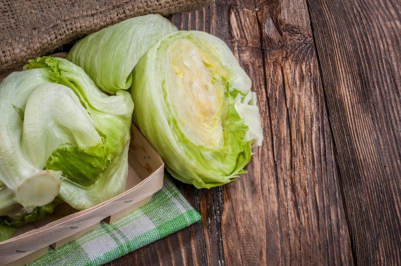 Как вырастить лучший салат кочанных и полукочанных сортов