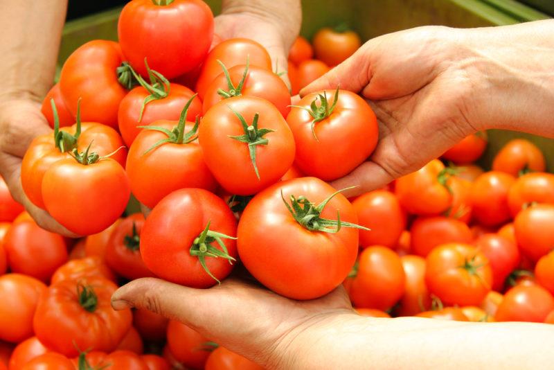 Как правильно собрать урожай и сохранить его