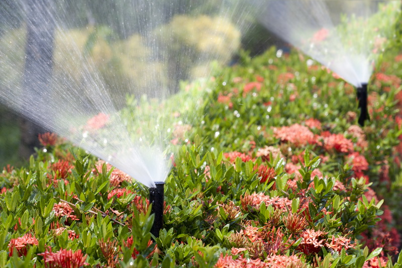 Организация верного полива сада в зависимости от культур, растущих в нем