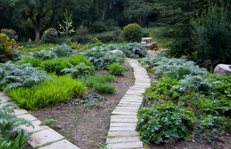 Планируем садовые дорожки: 6 главных моментов