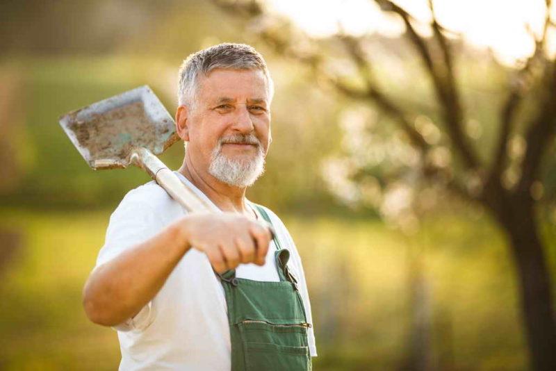10 весенних работ, на которые не стоит тратить время