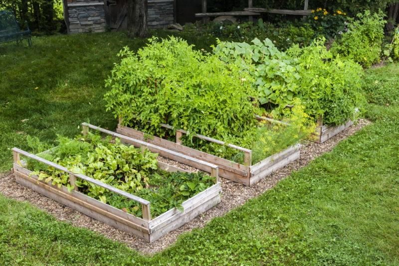 Грядки вашей мечты! Деревянные конструкции для огорода