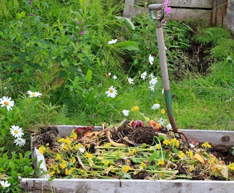 Способы компостирования: аэробный и анаэробный