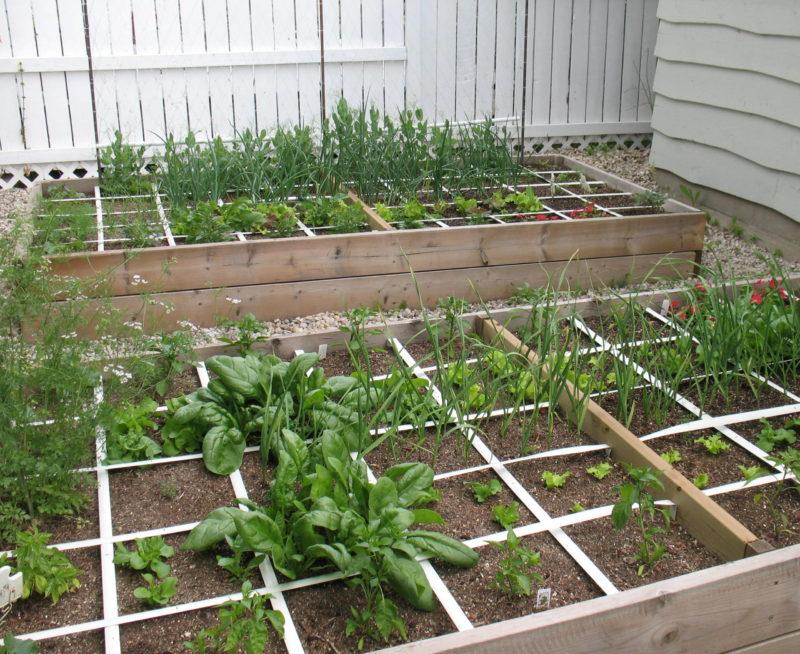 Огород на пятачке, или Умные грядки Мэла Бартоломью