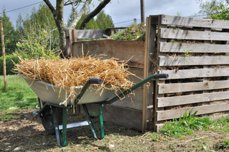 Универсальное удобрение своими руками: готовим компост правильно