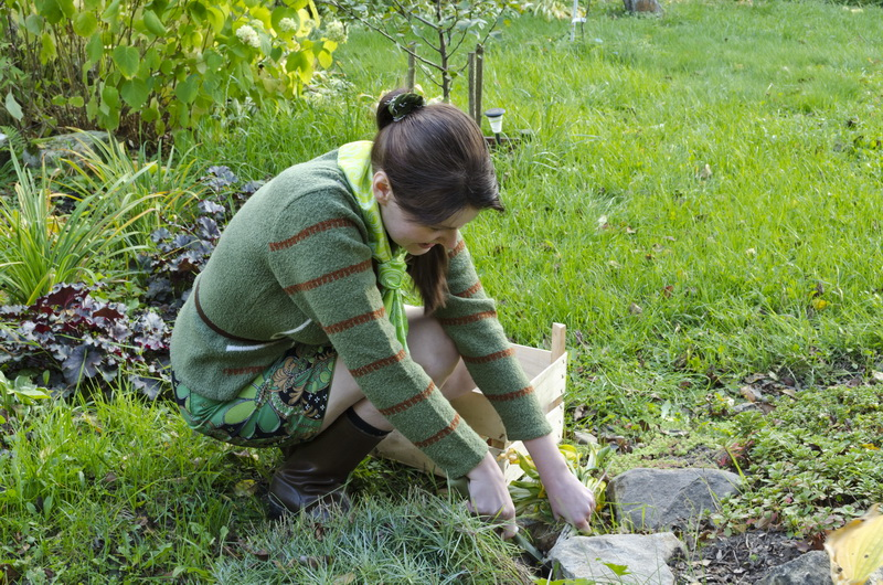 Как забыть о прополке огорода: геотекстиль и мульча