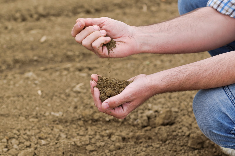 Каменная мука — инновация органического земледелия