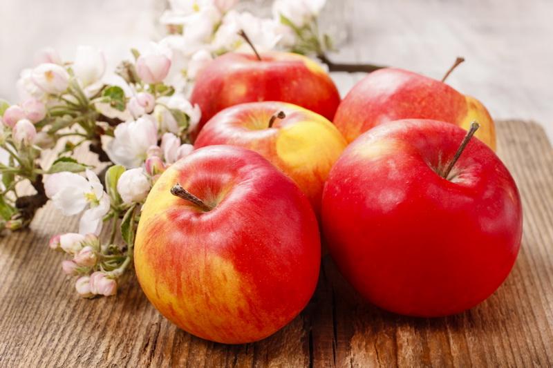 Рецепт яблочного повидла — если вы любите лакомиться этим десертом, самое время научиться его делать в домашних условиях
