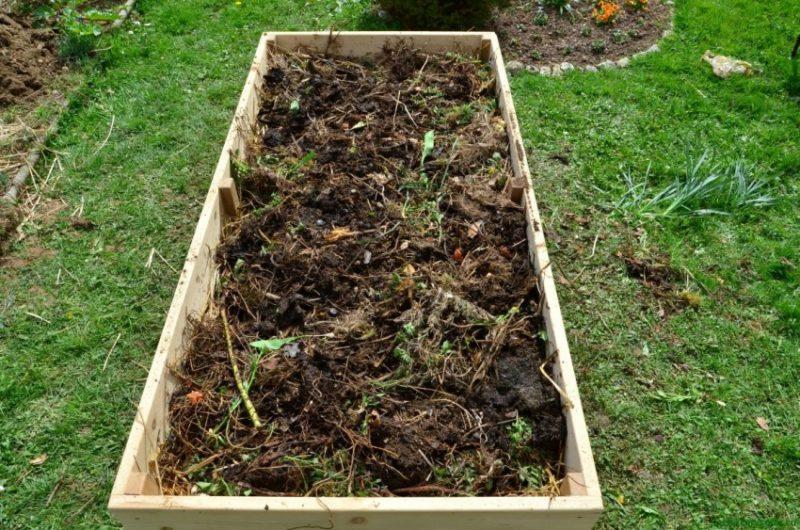 Как правильно оборудовать теплую грядку: советы бывалых огородников