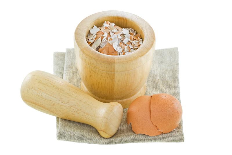 Корма для кур-несушек собственного приготовления