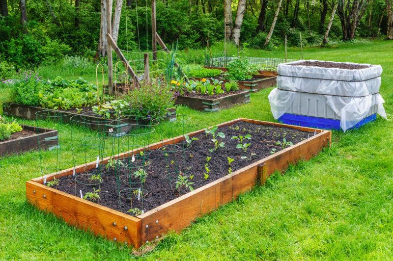 Опасности высоких грядок: о чем нужно помнить огороднику