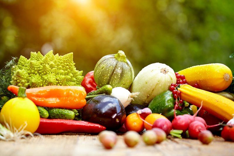 Рекомендации для начинающих огородников