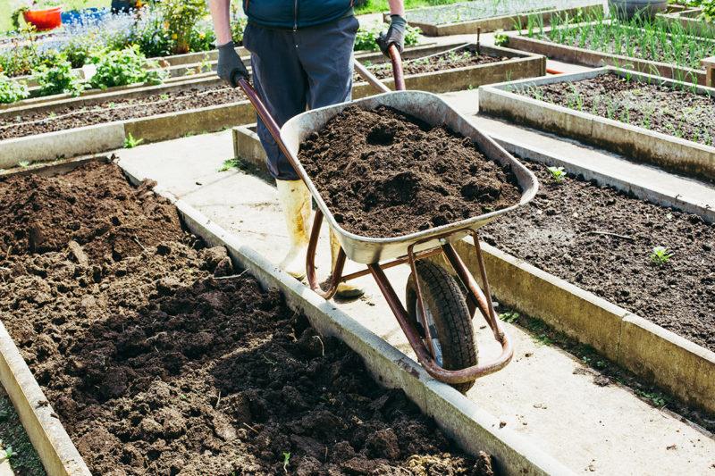 Как быстро повысить плодородность грунта на приусадебном участке