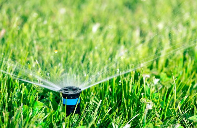 Уход за зеленым газоном осенью очень важен. Как я готовлю свои газоны к зиме, сохраняю их здоровыми и зелеными