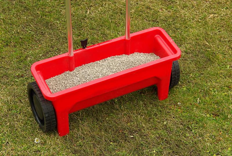 Посадка газона на «раз, два, три» — мой пошаговый план, который работает без сбоев