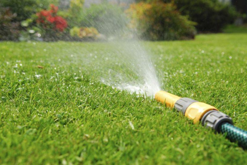 Всего 4 мероприятия по уходу за газоном осенью — и он здоровый, ярко-зеленый и очень хорошо переносит зимние холода